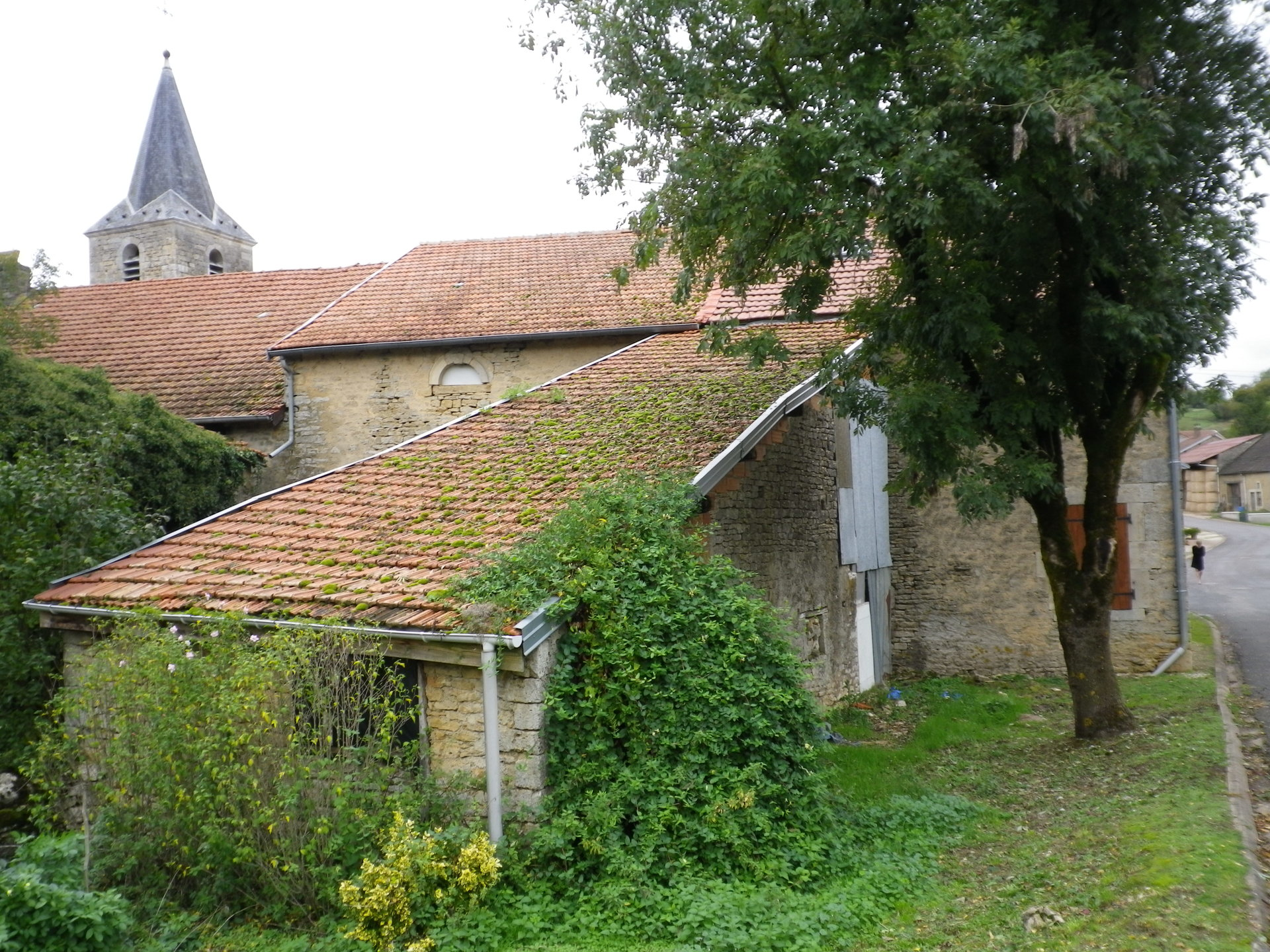 Nice house in the Haute-Marne with garden on a river