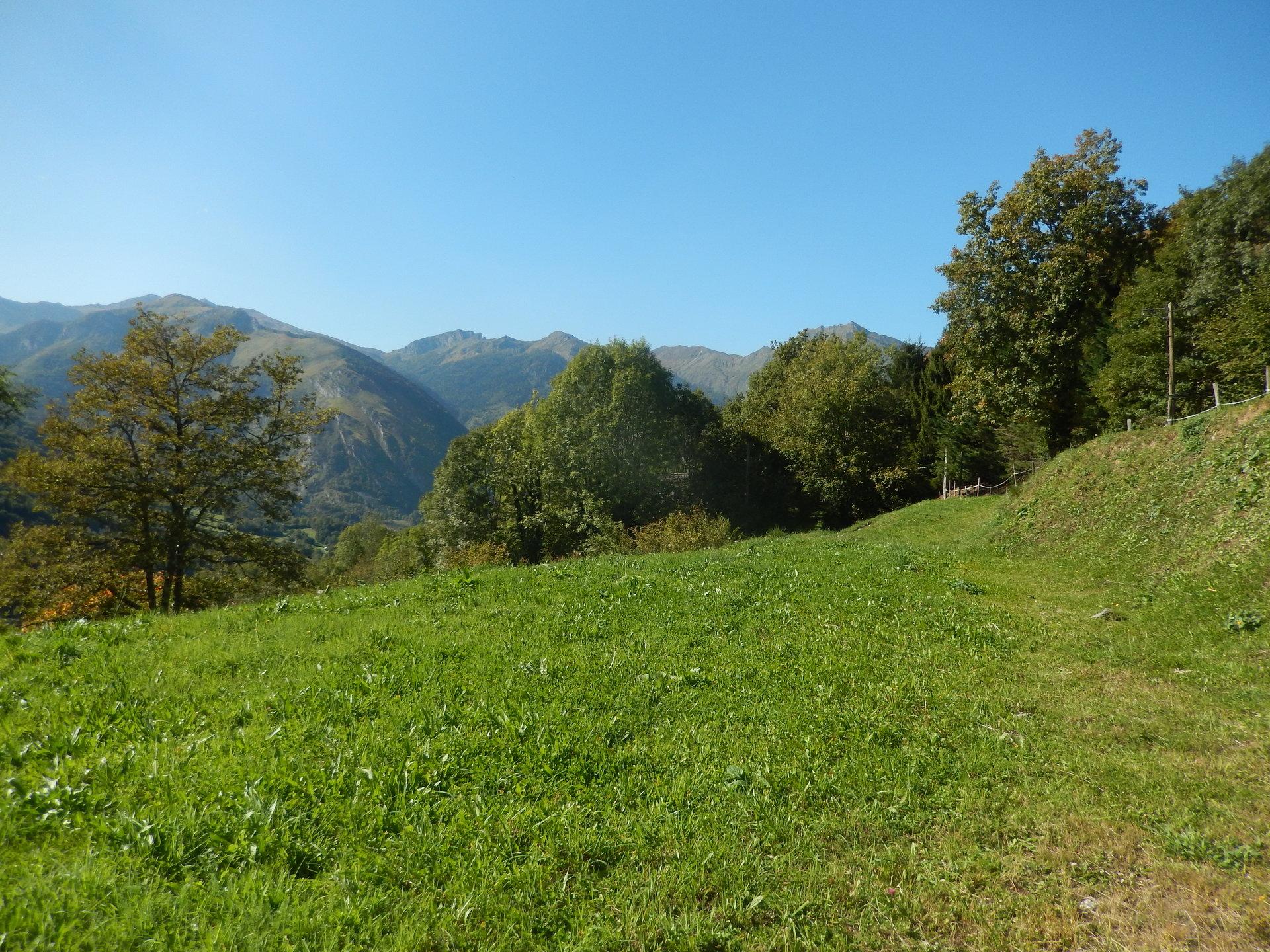 Vallée d'Ossau Terrain constructible