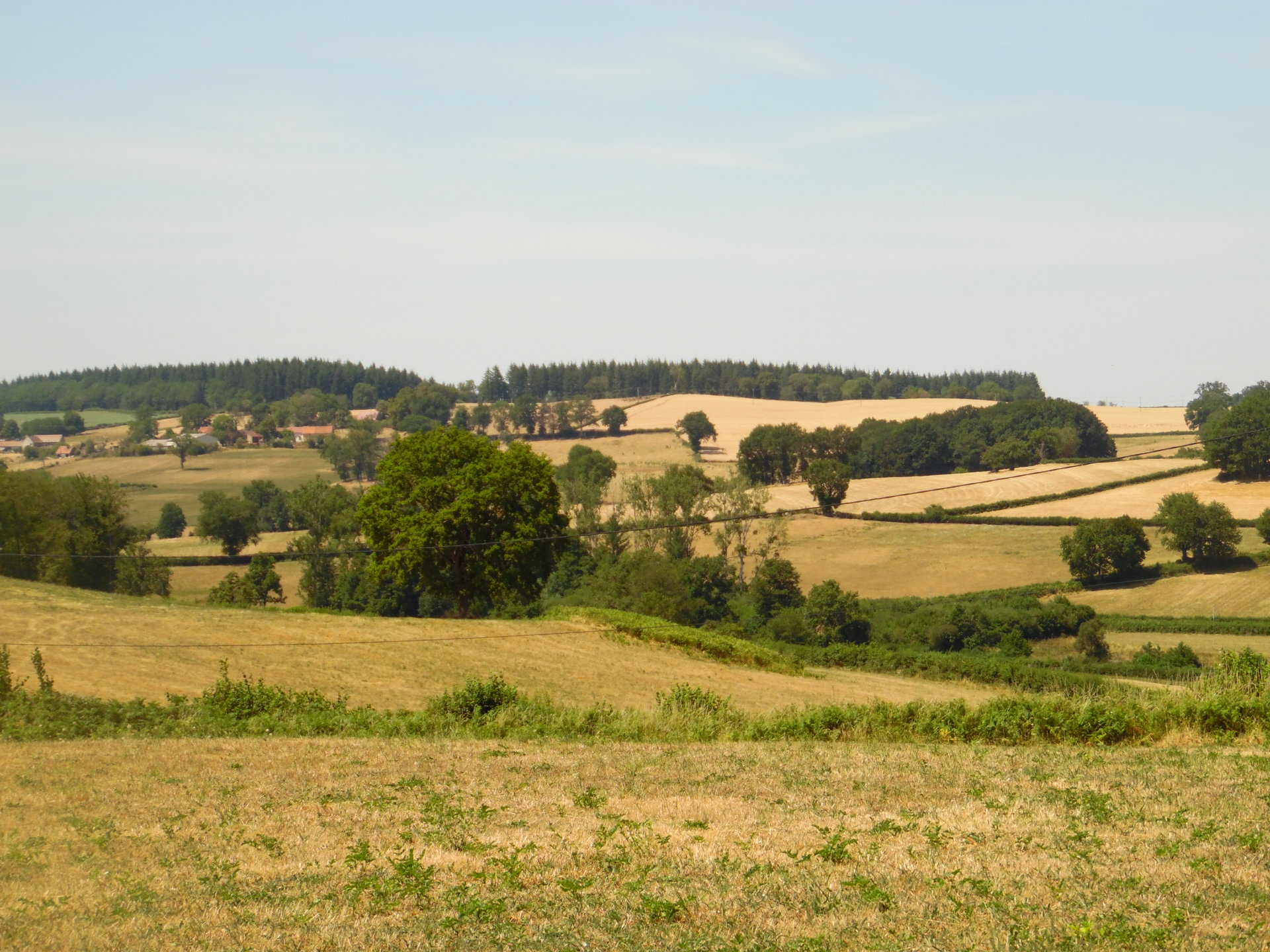 For sale in the Auvergne, house, pool,  plot of 3,5 acres.