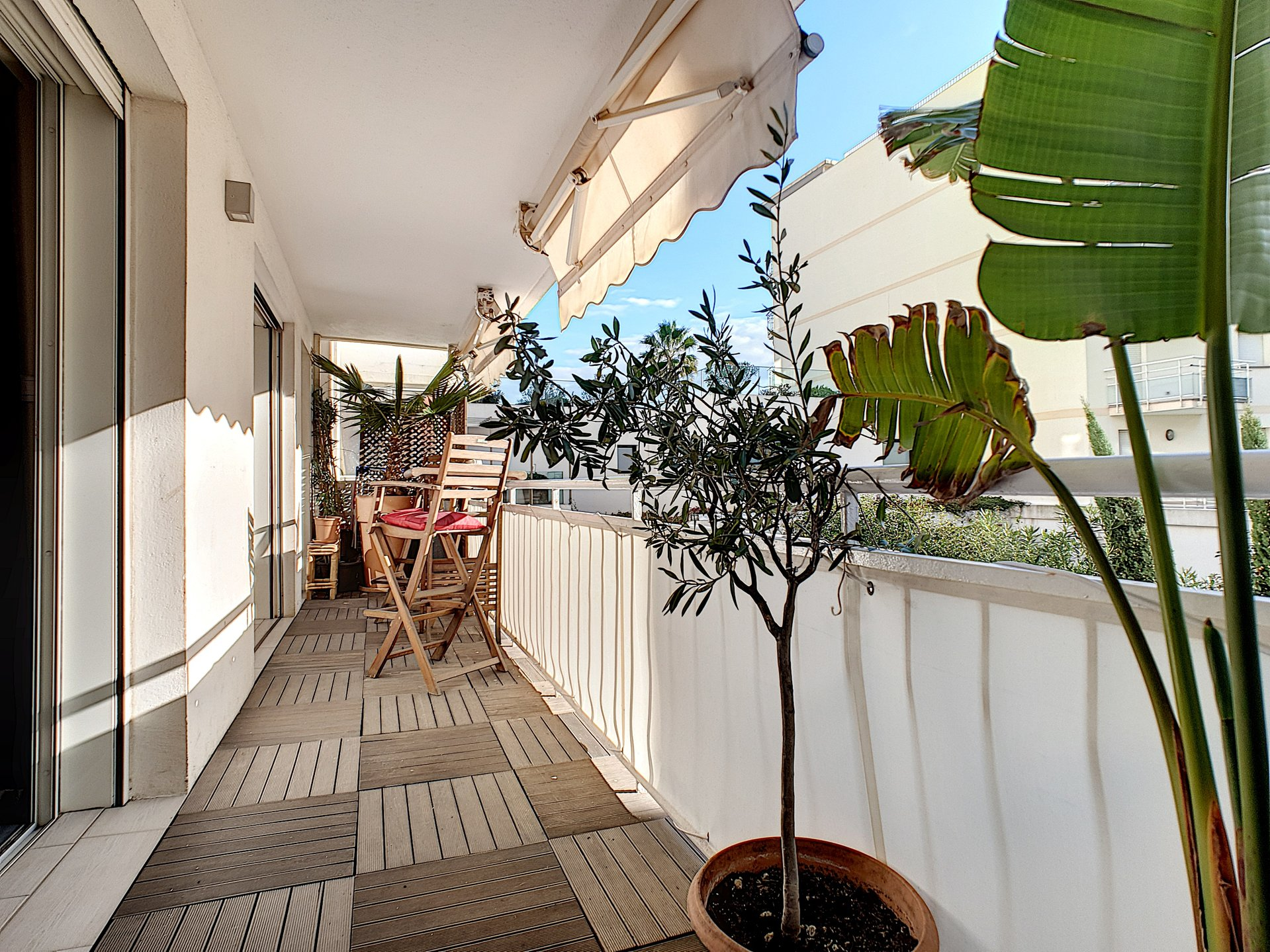 Cannes Palm Beach for sale