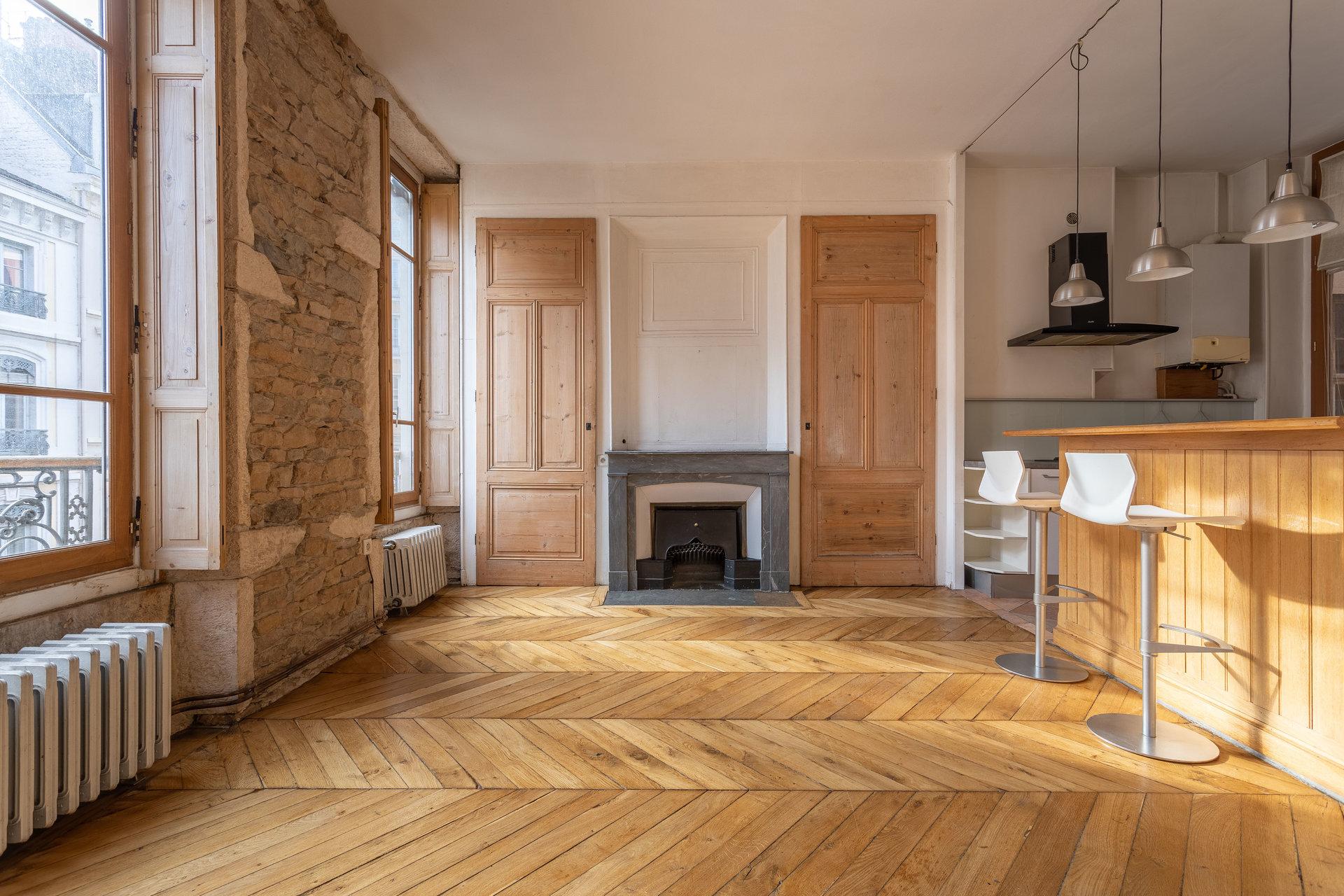 APPARTEMENT BOURGEOIS - SATHONAY - JARDIN DES PLANTES