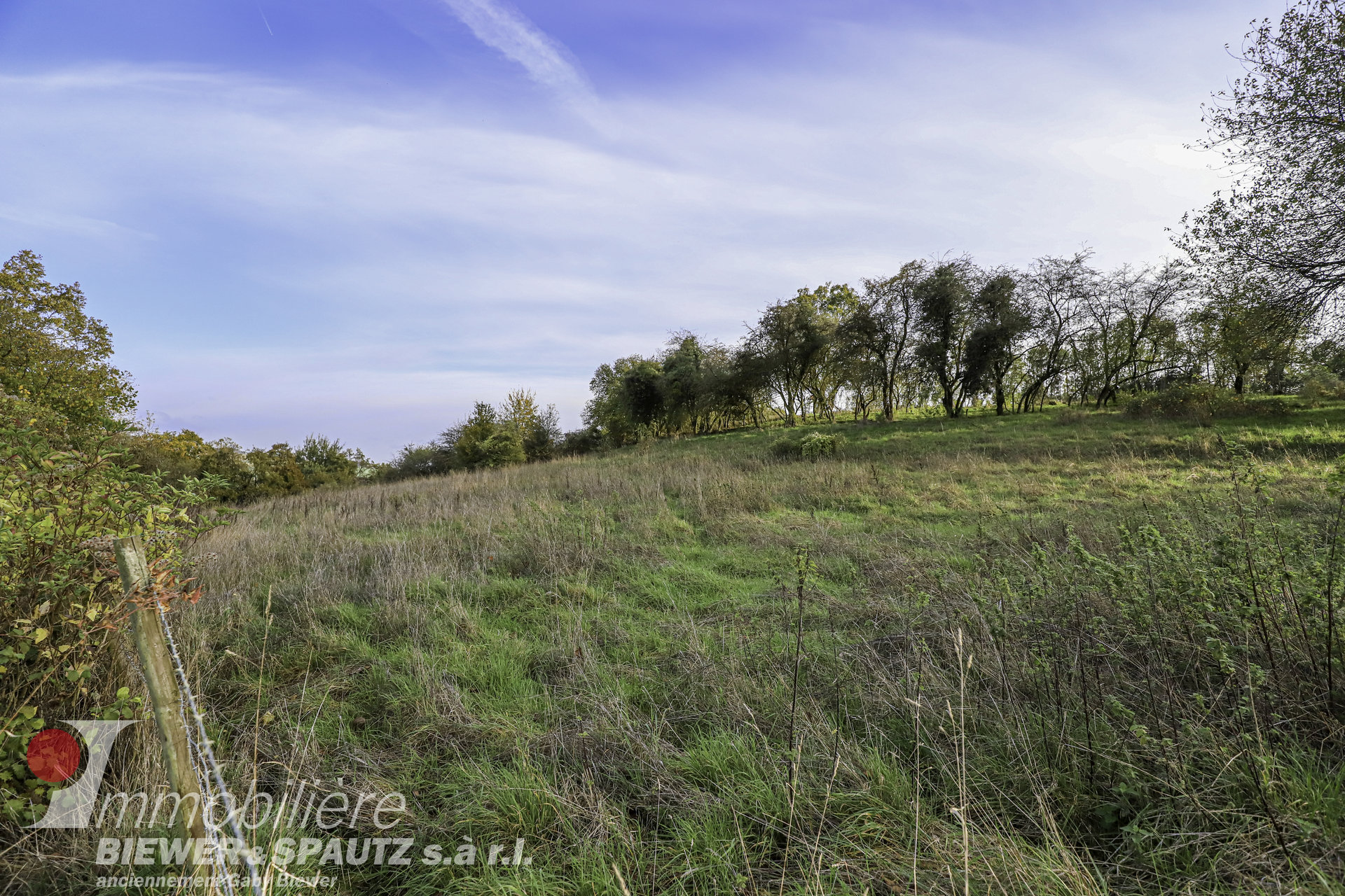 SOLD -  arable land in Ahn