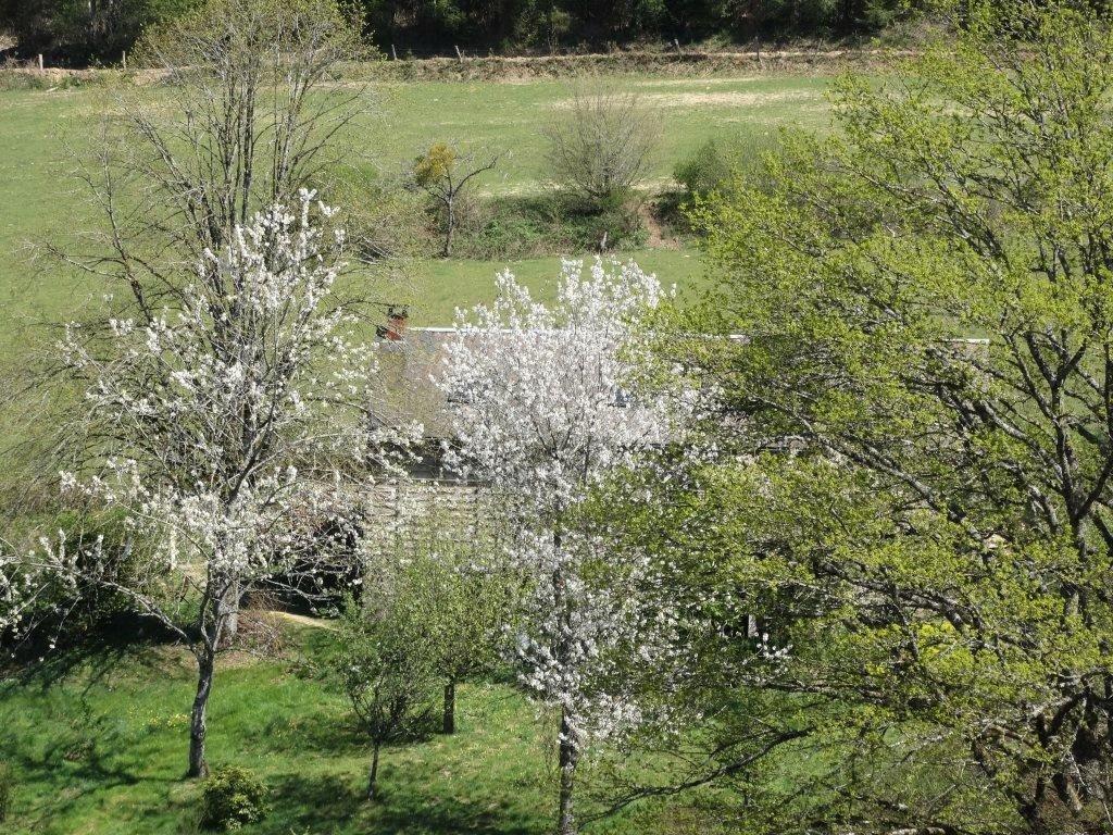 Zeer rustig gelegen huis te koop in de Morvan, regio Bourgogne