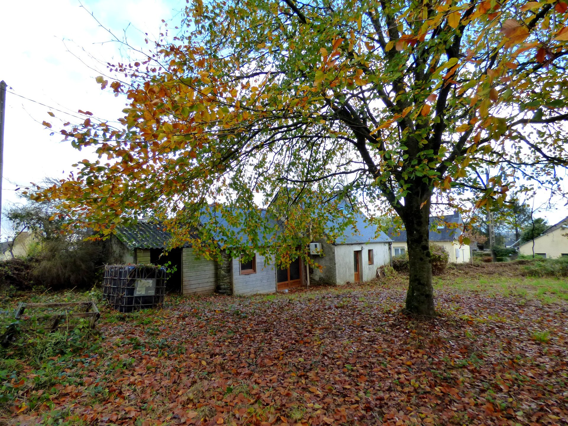 Sale House - Plevin