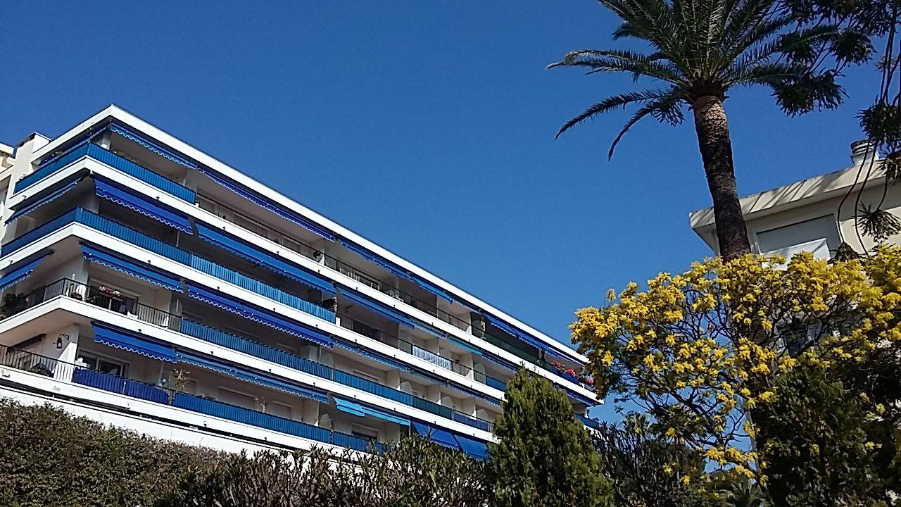 Magnifique F1 de 38 m², terrasse de 12 m²