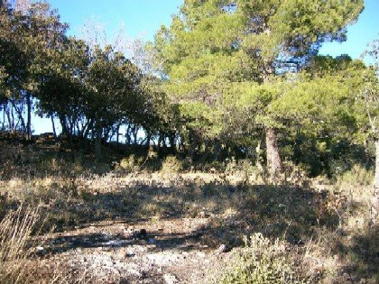 Sale Building land - Baudinard-sur-Verdon