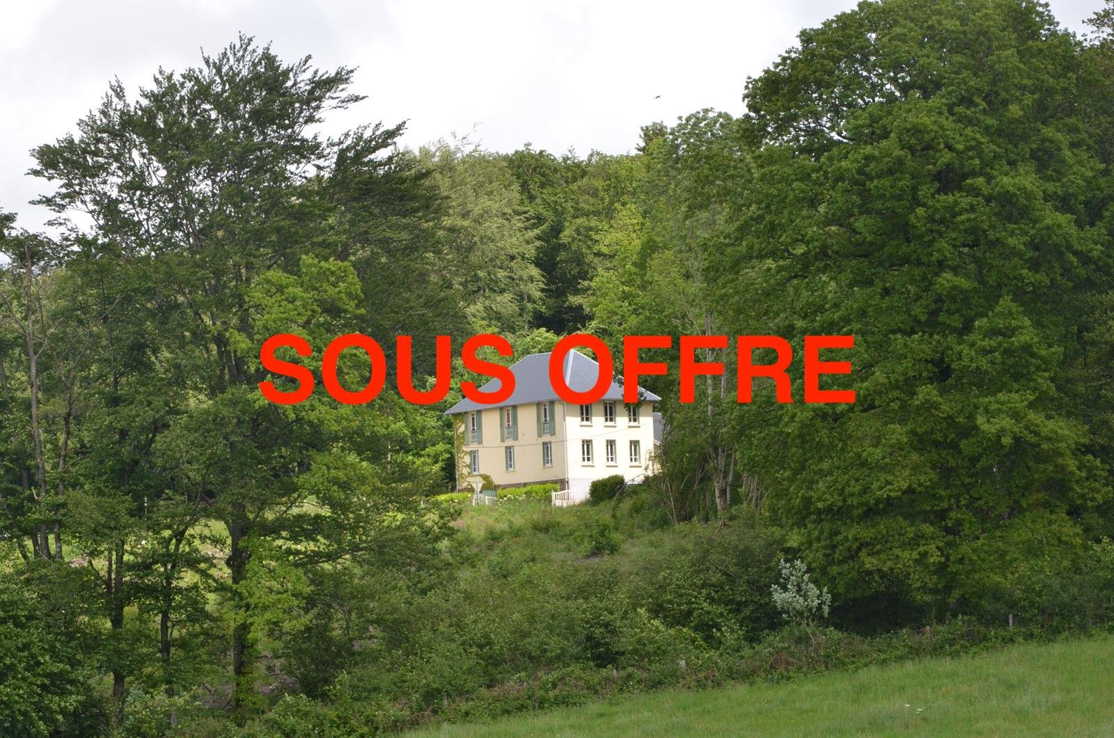 Chambres d'Hôtes with a lot of land for sale in Burgundy