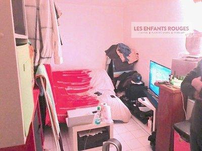 Studette marais Bretagne/Charlot