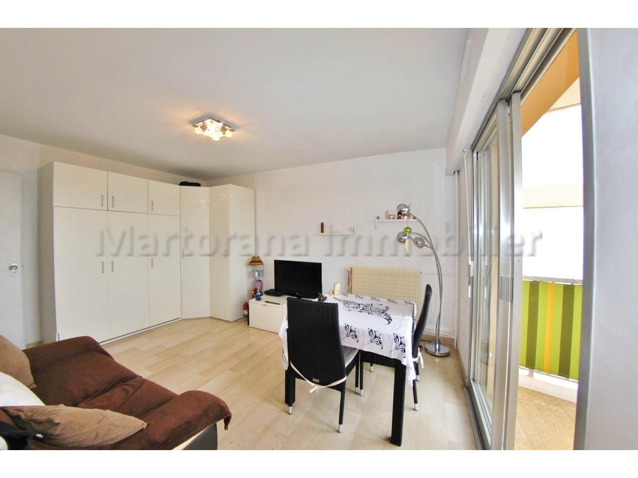 Nice furnished studio with terrace and swimmingpool to rent