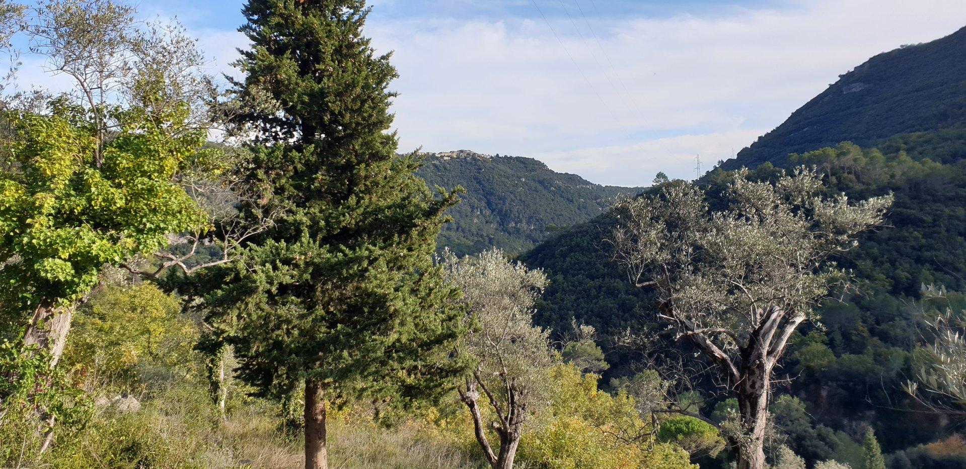 terrain dans la vallée de la Siagne avec cabanon