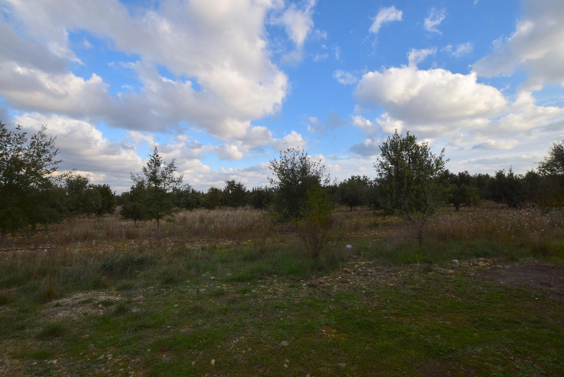 Ensemble immobilier avec 14 hectares dont 10 hect en truffière