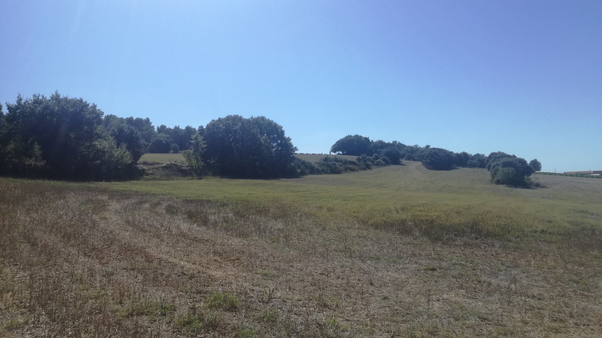 Terre Agricole avec cabanon cadastré