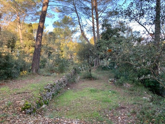 Land for sale in Lorgues.
