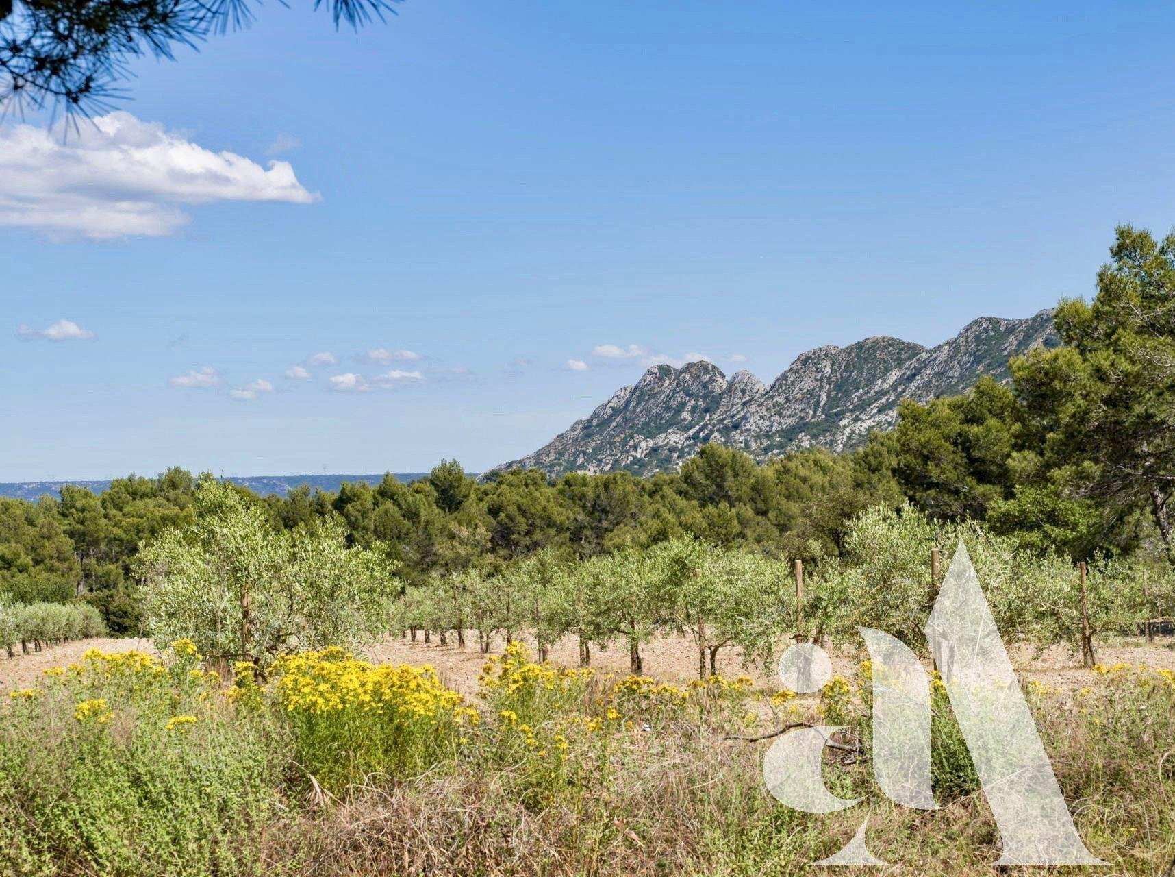 PROPERTY FOR SALE IN SAINT-REMY-DE-PROVENCE