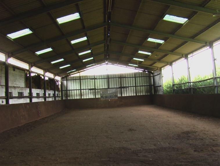 Paardenboerderij en huizen in Rancon - Haute Vienne