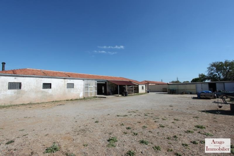 Rental Local Rivesaltes