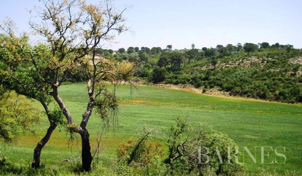 Building plot for Golf Course, Hotel and 226 Houses