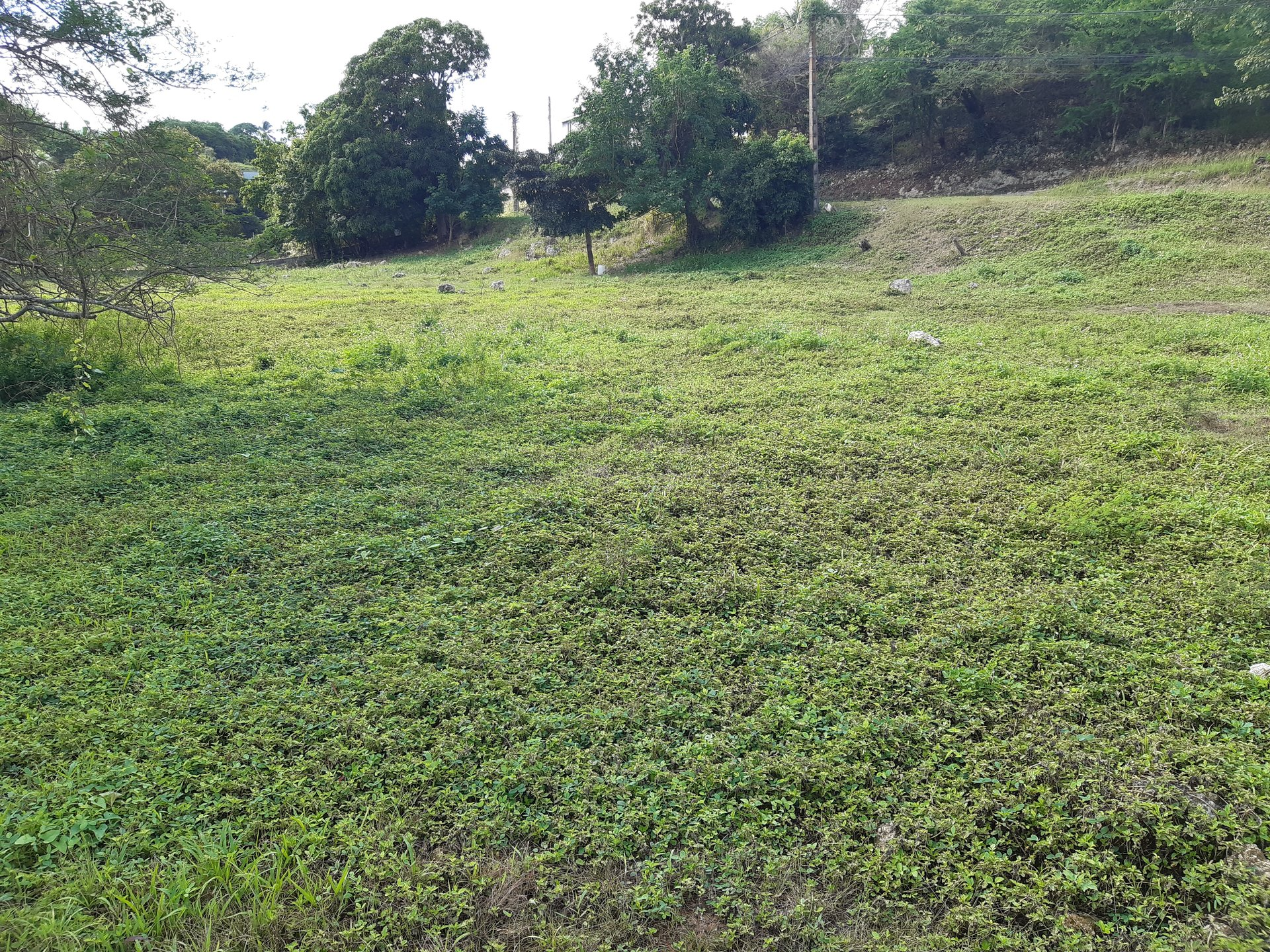 construction terrain plat 2000 m2 le gosier guadeloupe