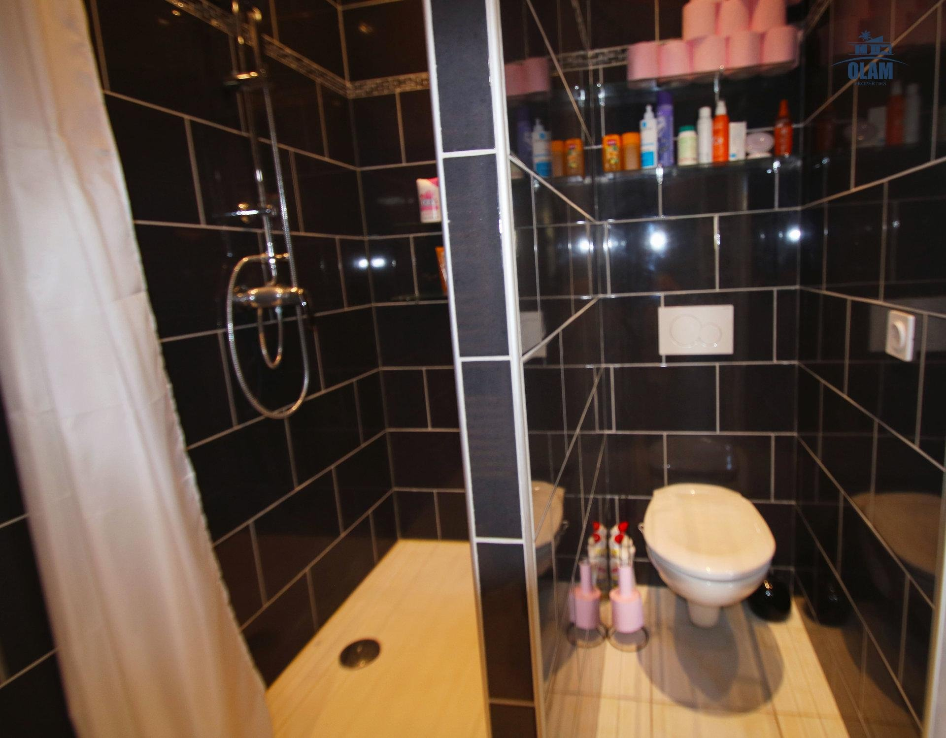 Shower room, toilet, studio, Cannes, Croisette, French Riviera