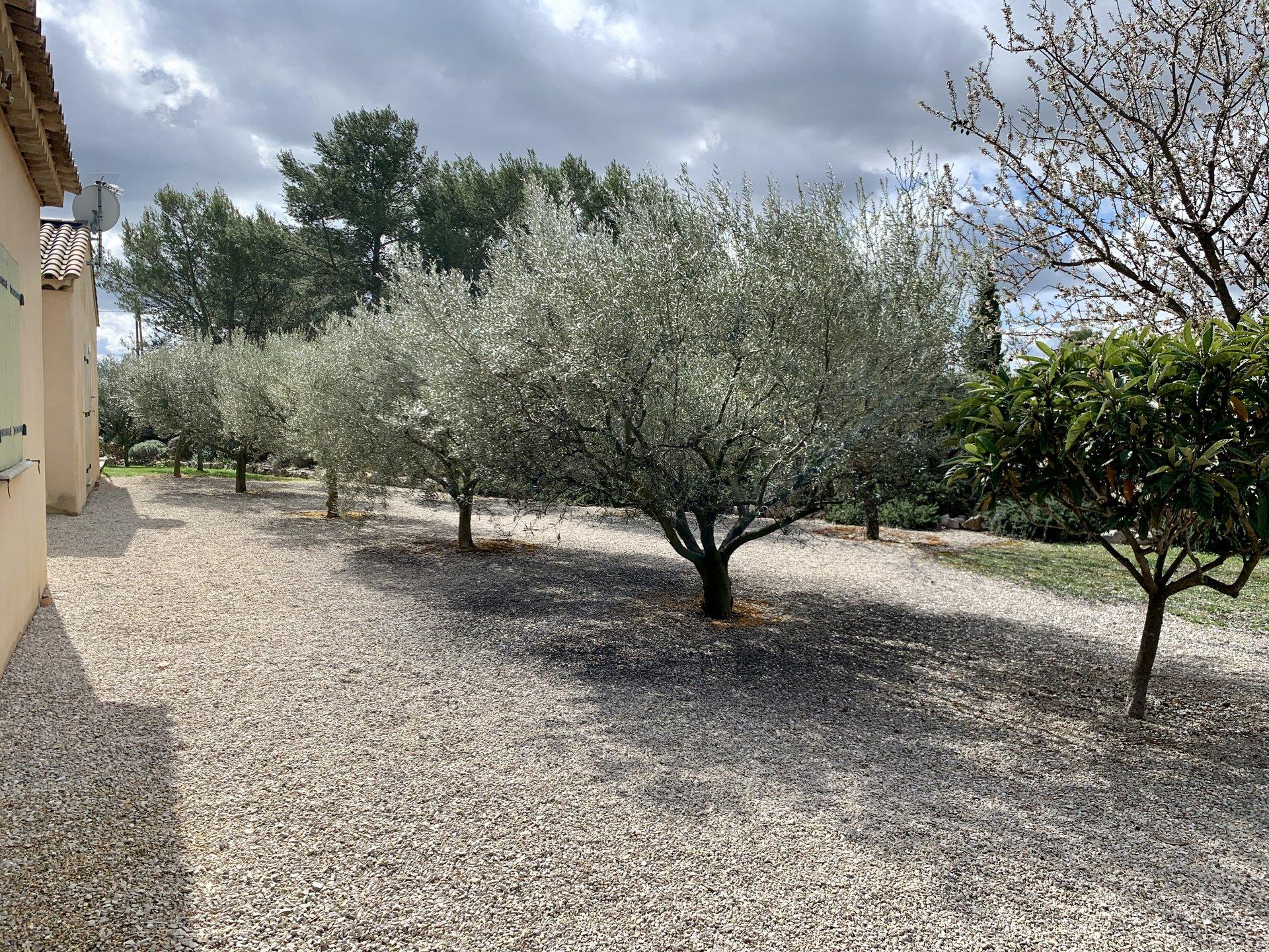 Villa Atypique / Aix-en-Provence
