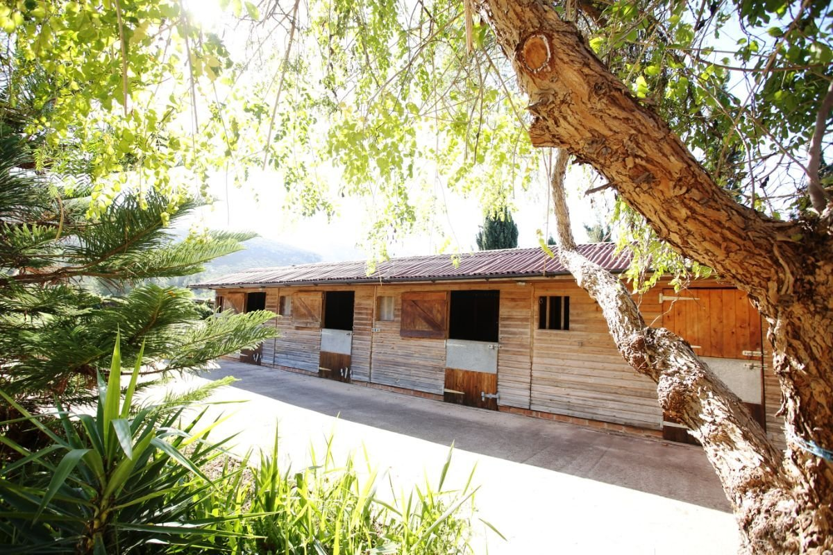 Very spacious country house with stables
