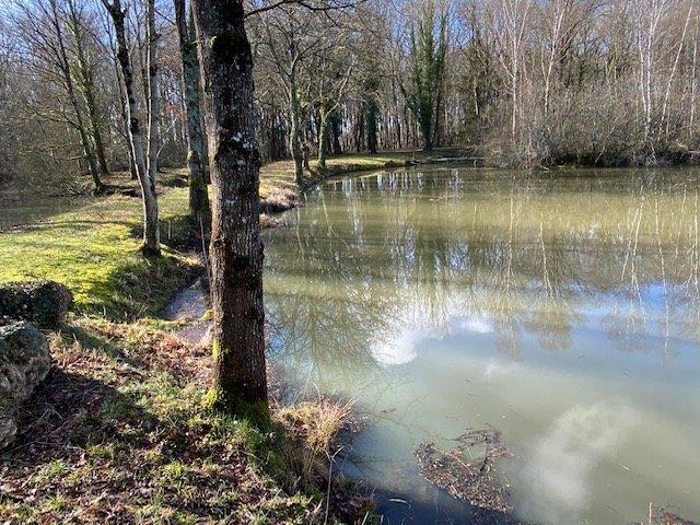 Etang avec Chalet sur 7 hectares 46 ares