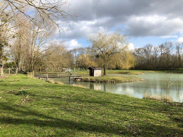Terrain de loisir avec étang - Savigné sur Lathan