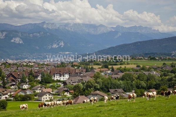 Superbe T3 sous les combles proches Suisse et Annecy