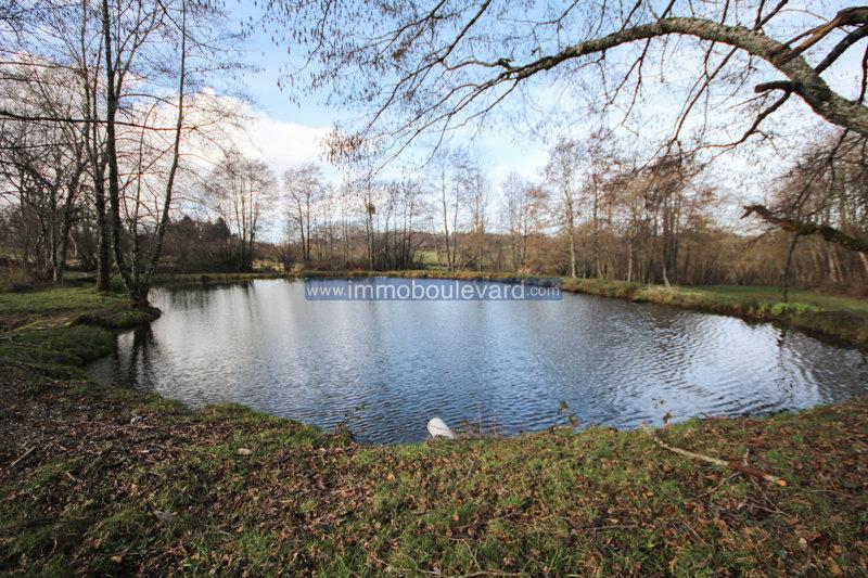 Propriété avec étangs à vendre près de Fachin dans le Morvan