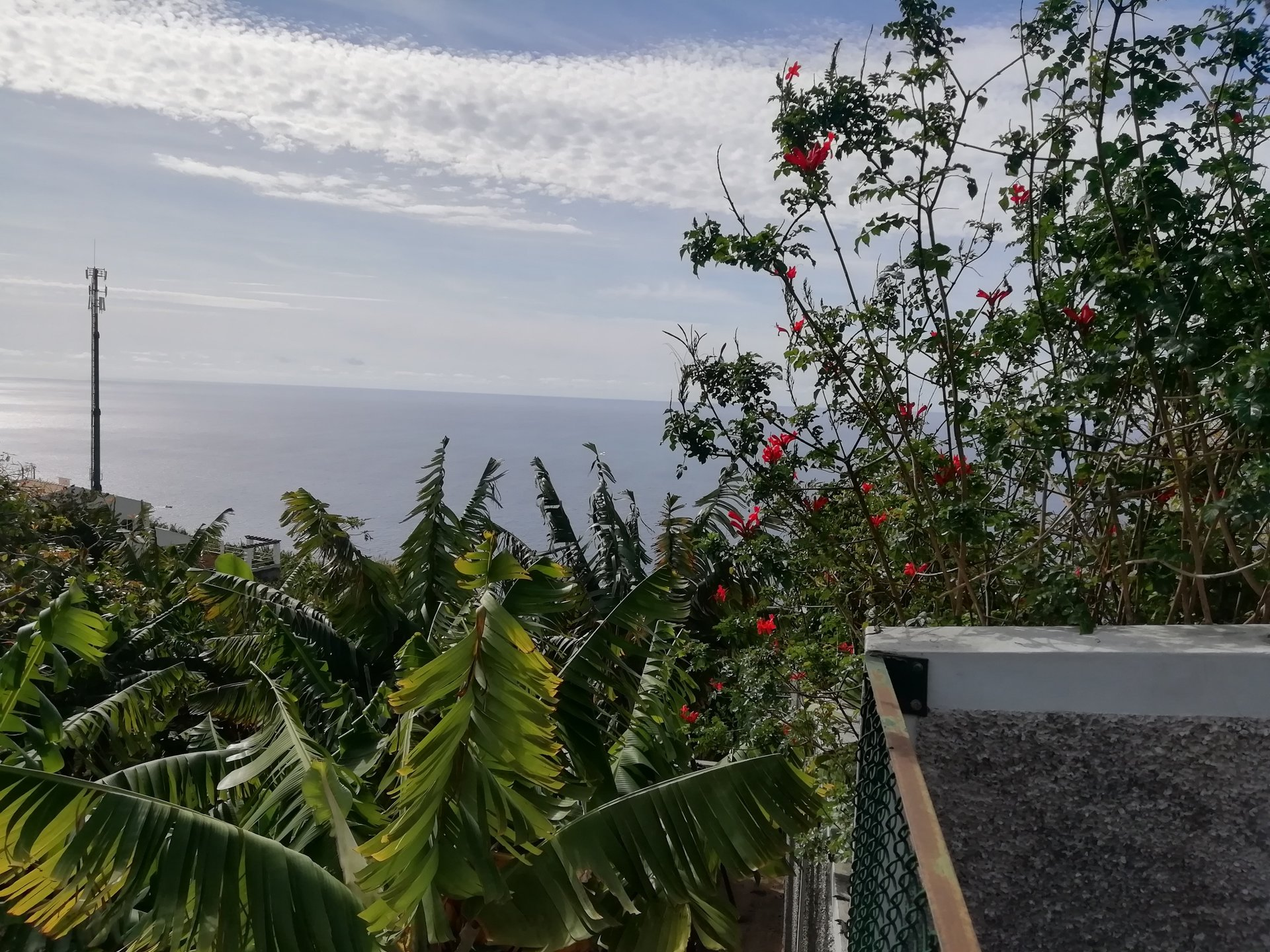 Building land and agricultural land with sea view