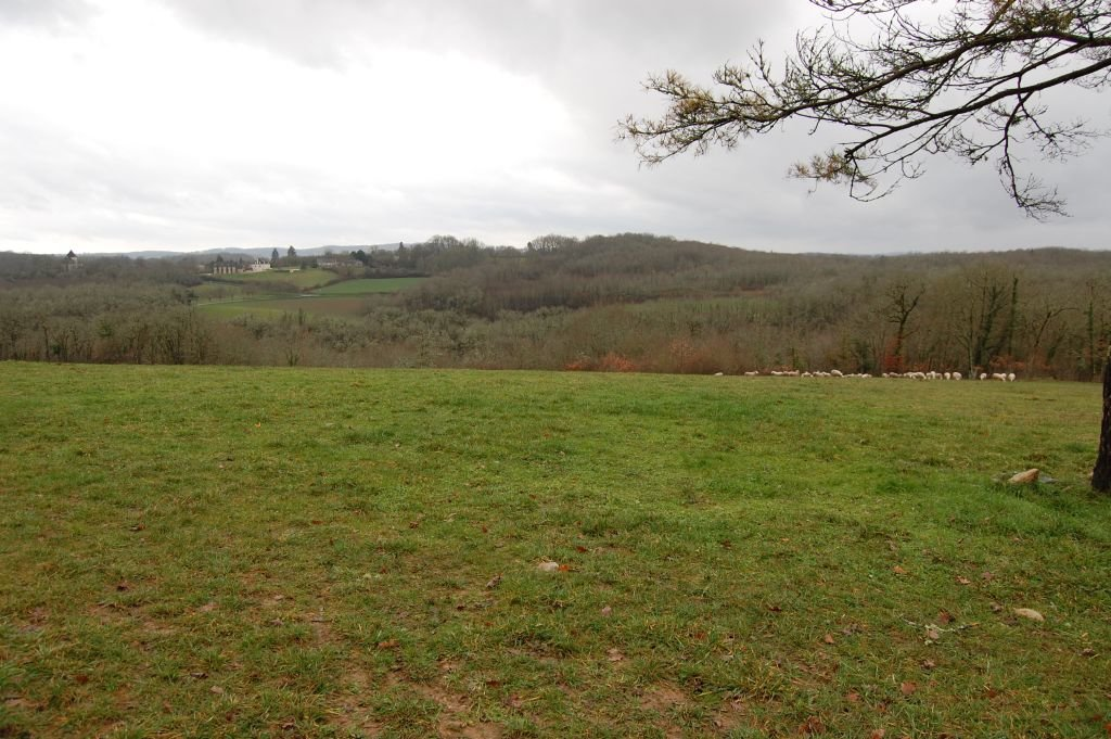 LOT - Grand terrain agricole