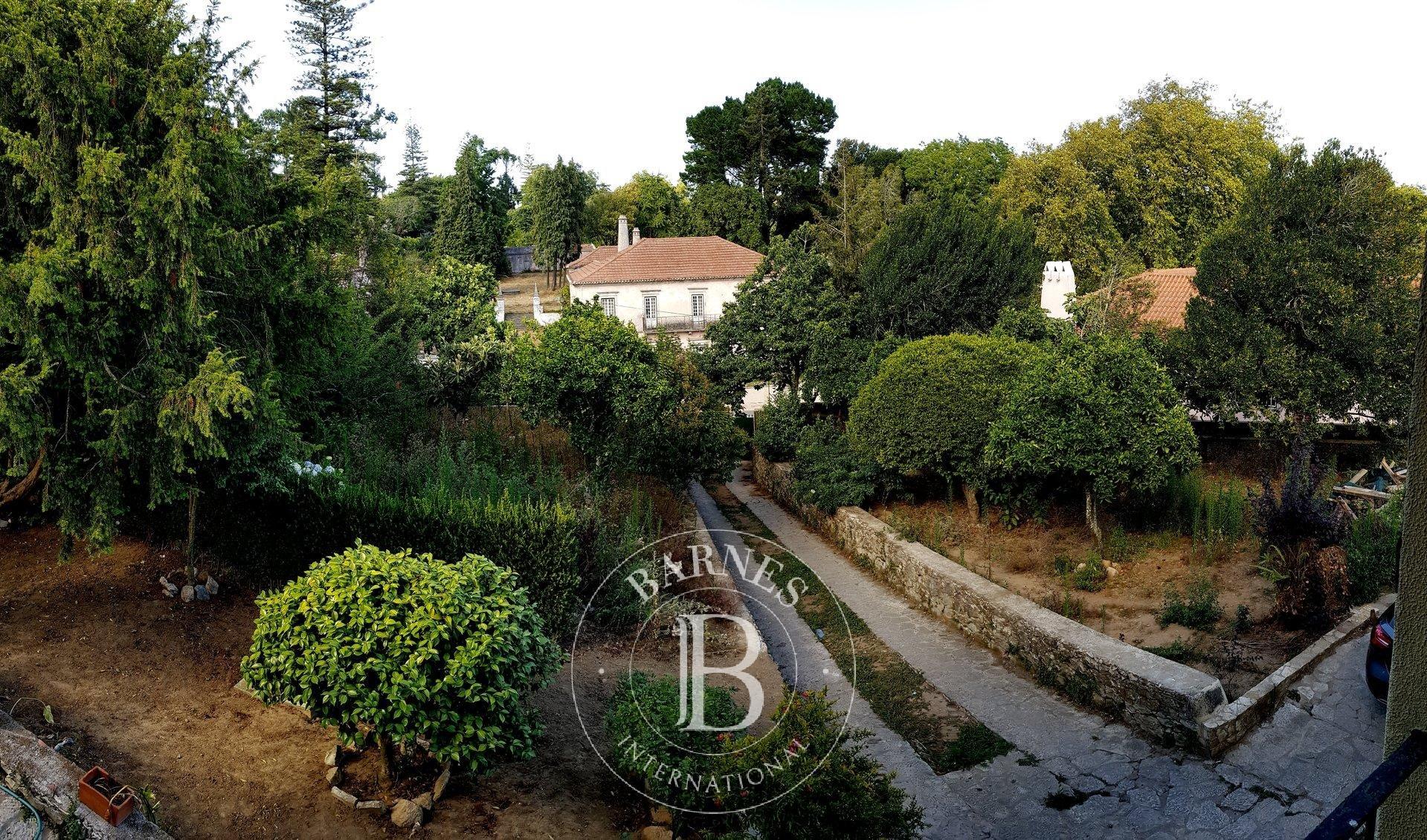 Moradia com excelente terreno  em S.Pedro de Sintra