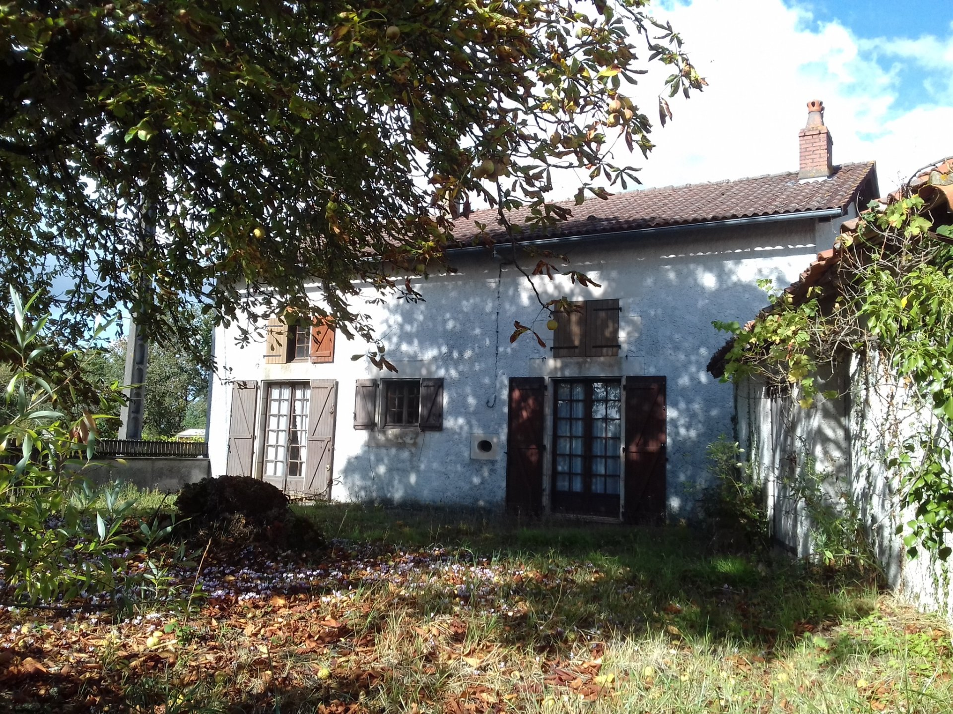 Small farmhouse for renovation, great price!