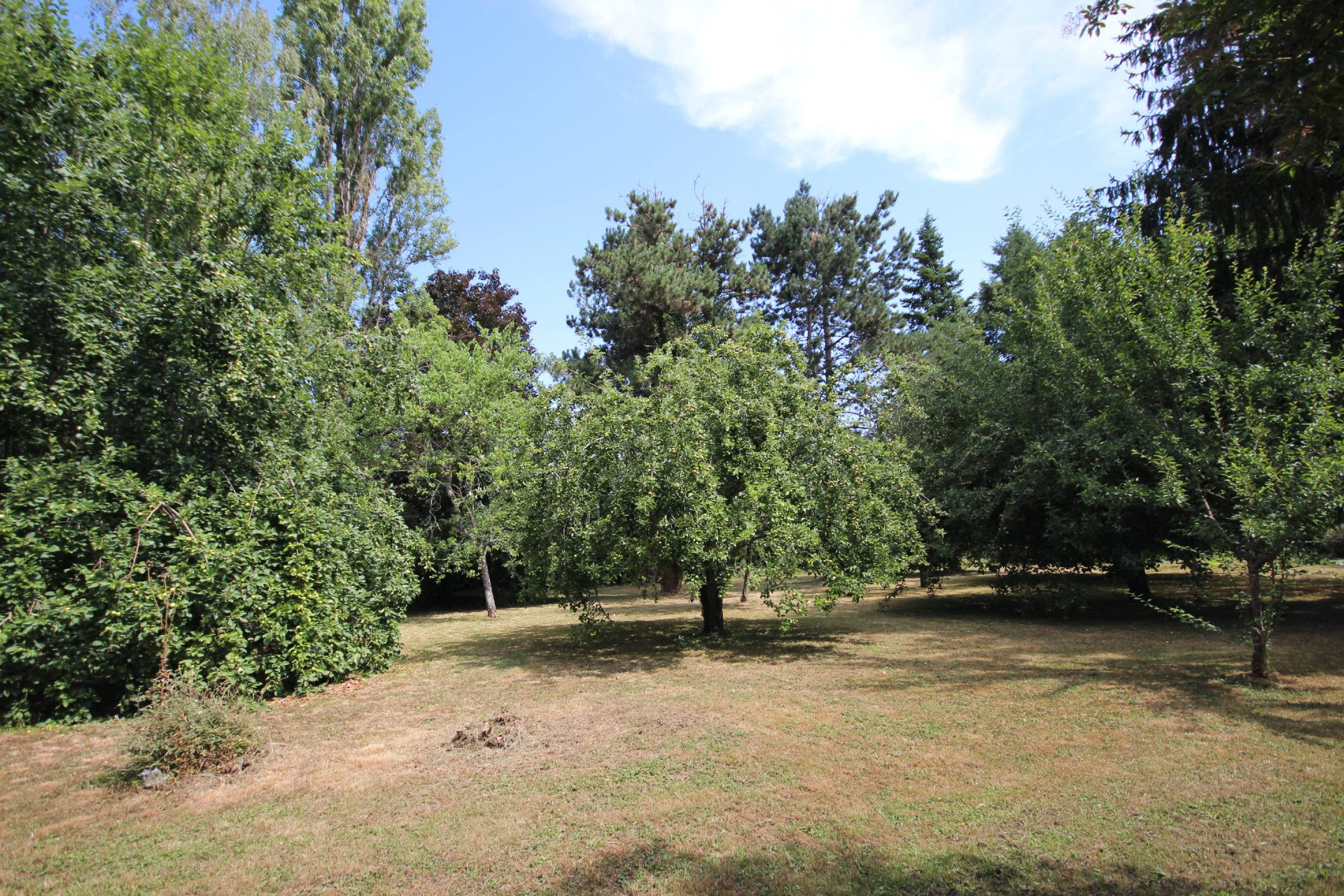 Spacious family home set in mature gardens walking distance to bastide town