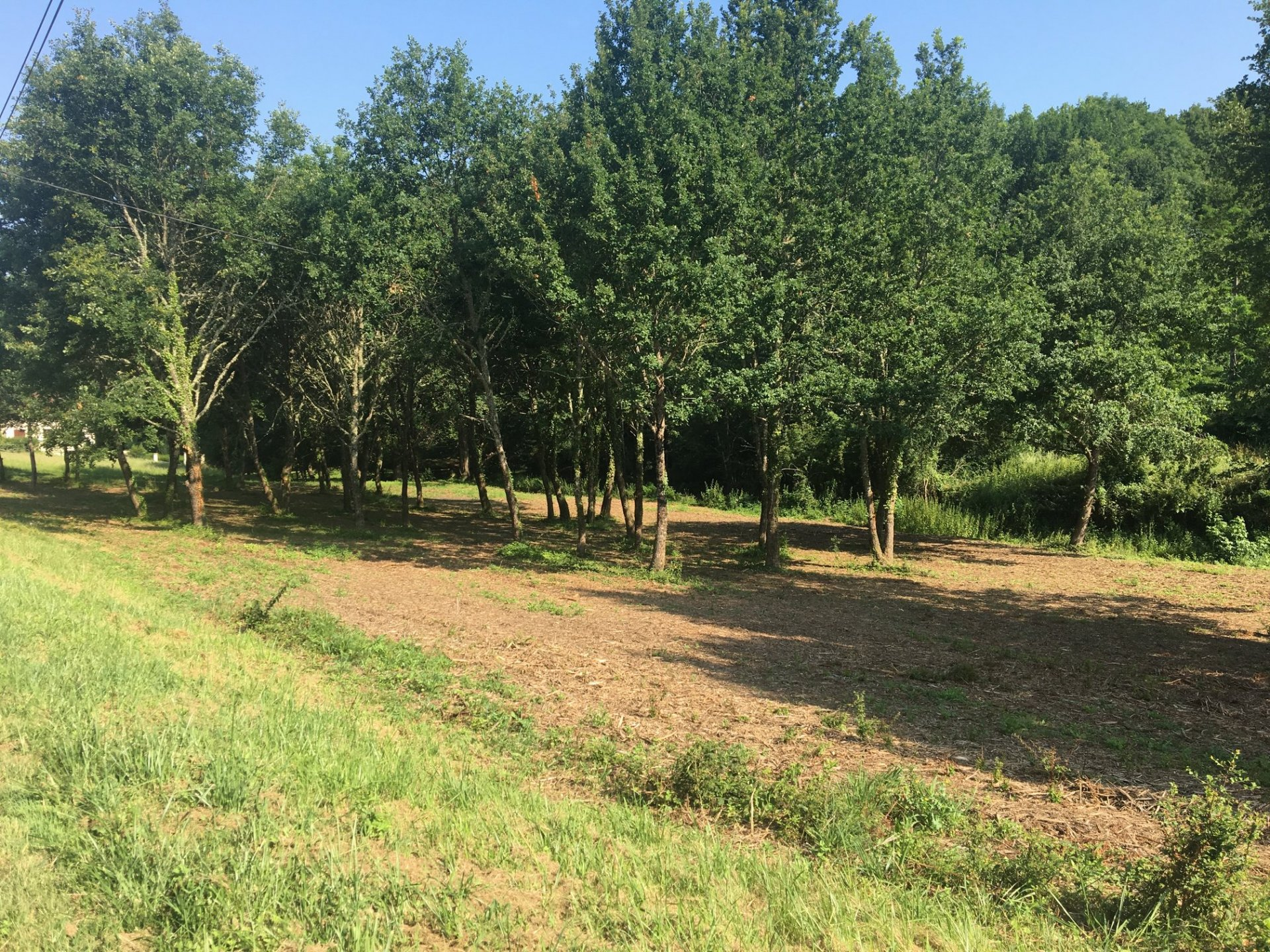 On the outskirts of a village with shops, 2612 m² approx. building plot
