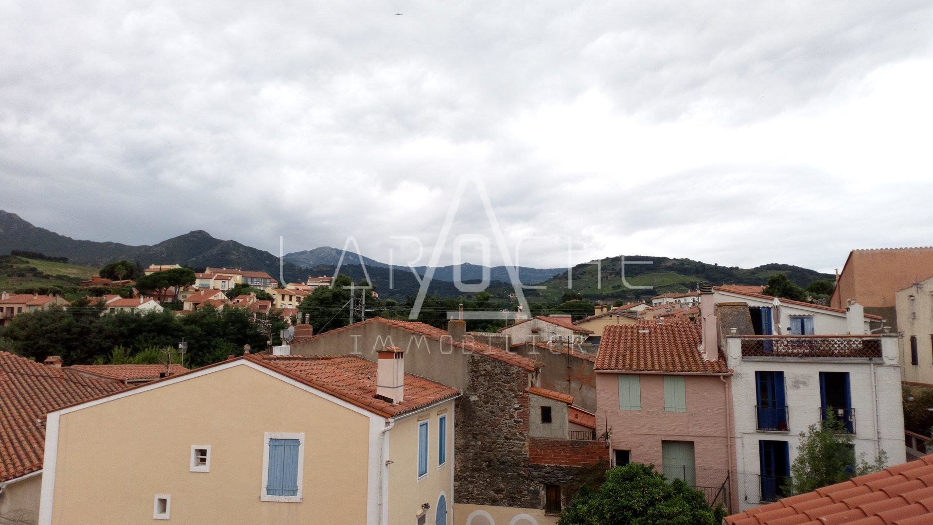 ENSEMBLE IMMOBILIER - COLLIOURE