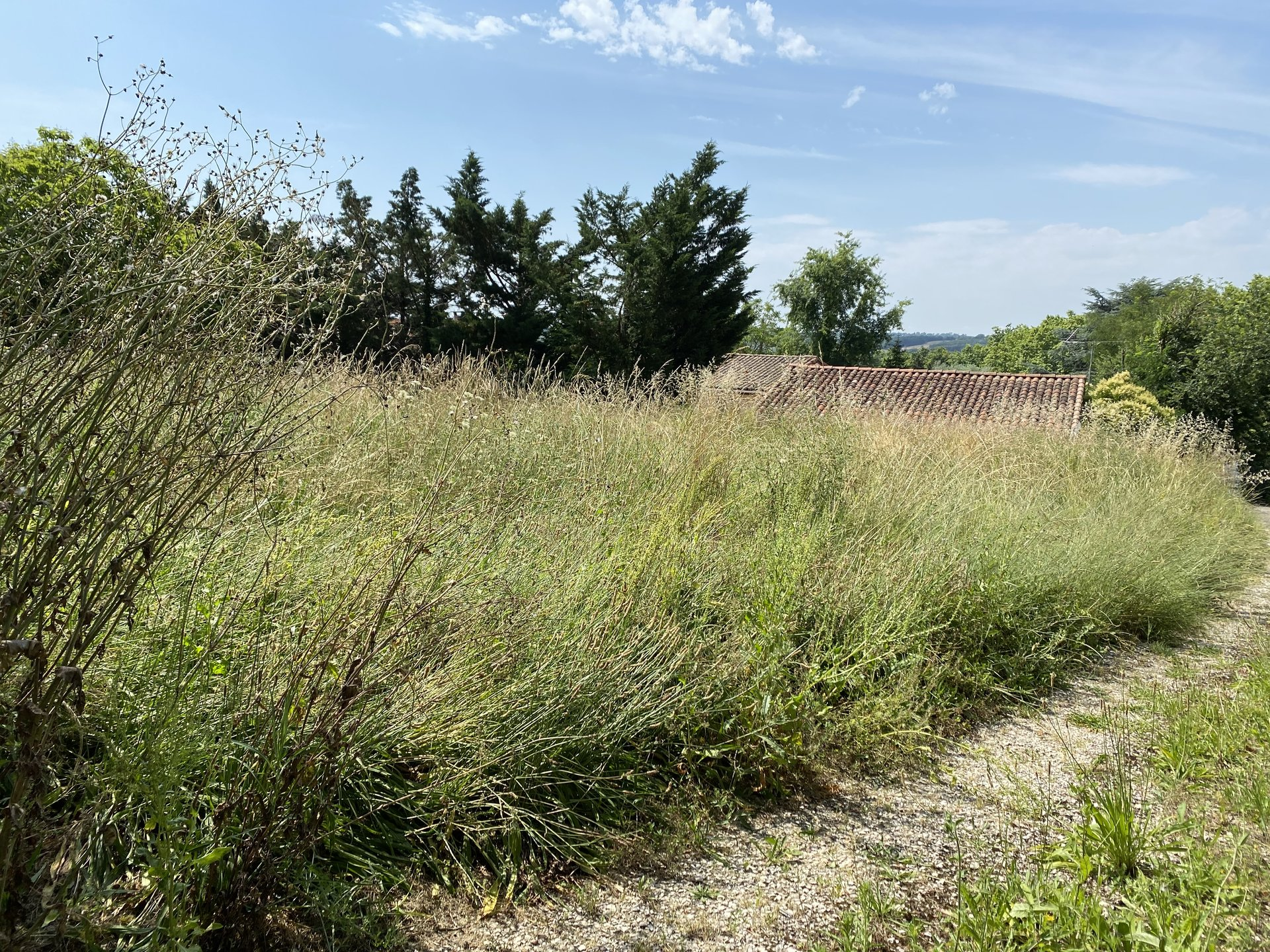 Sale Plot of land - Garidech