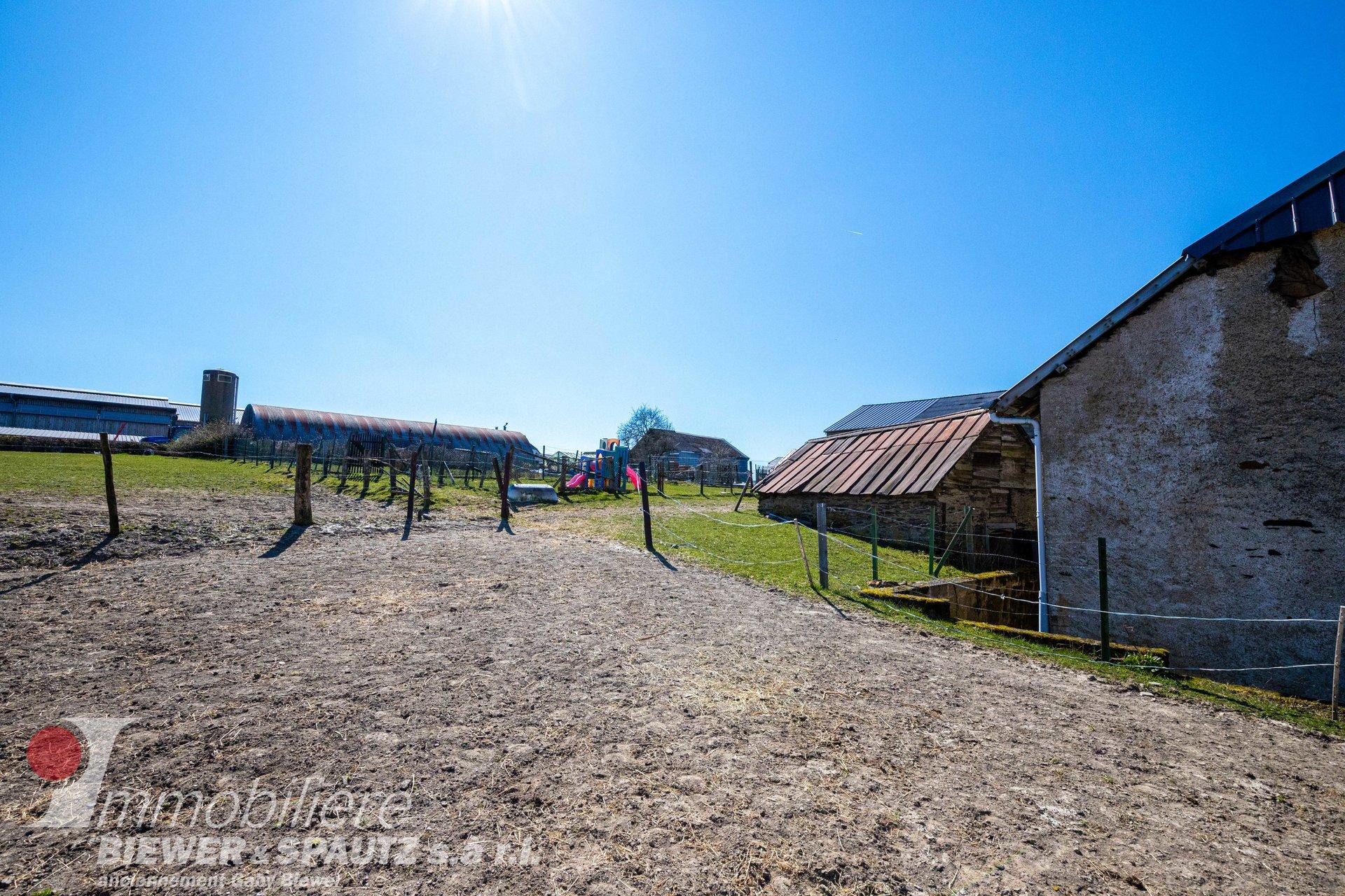 UNTER VORVERKAUFSVERTRAG - alter, renovierungsbedürftiger Bauernhof in Holtz