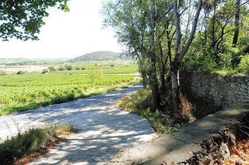 Belle propriété B&B au calme, 15 km de Pézenas