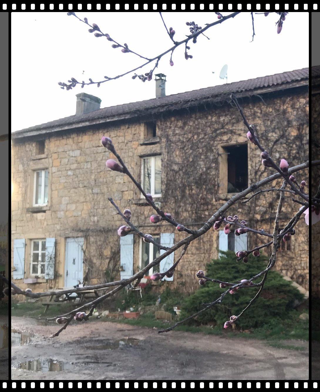 Maison en pierre à Frontonas.