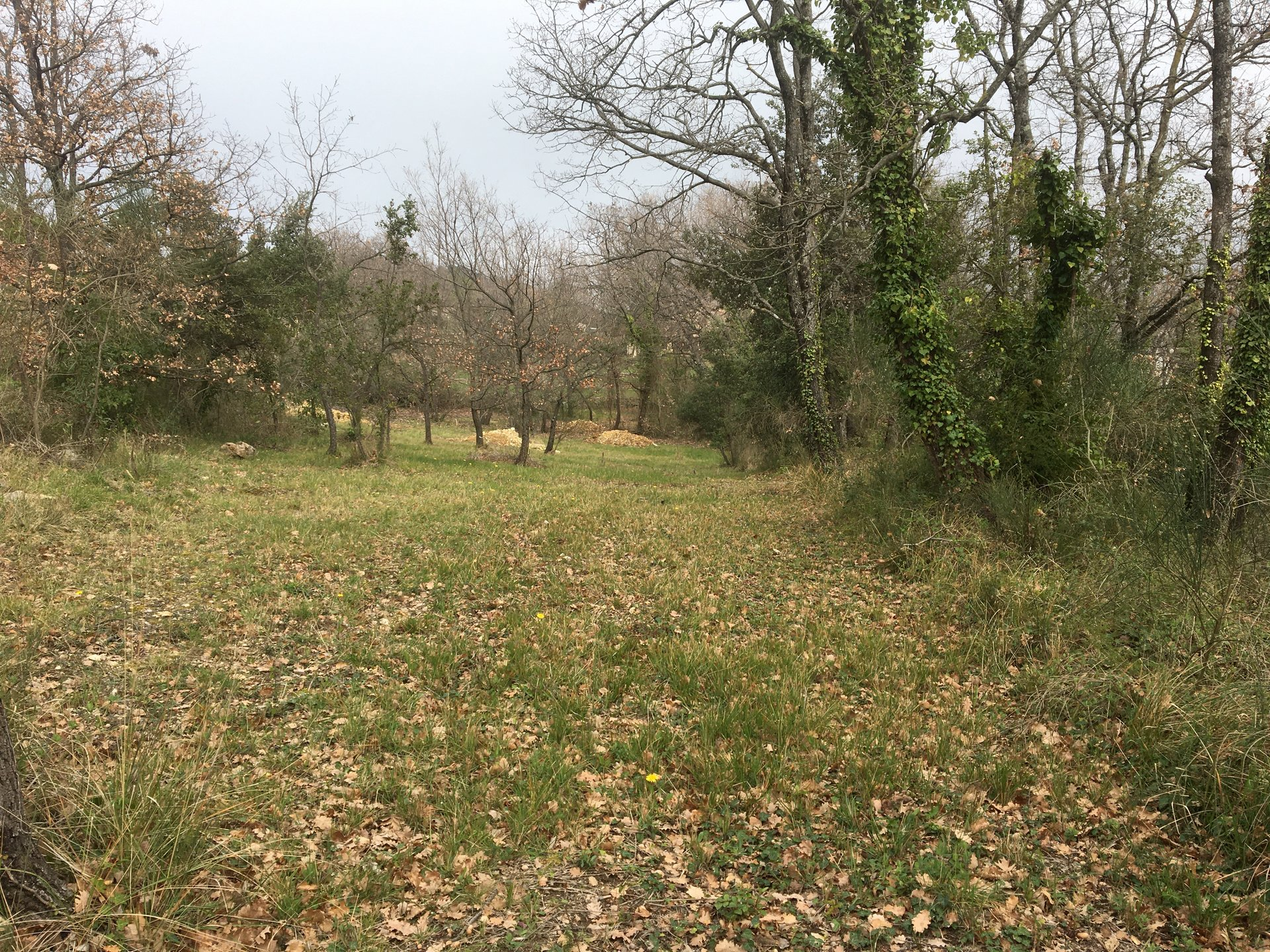 For sale Plot of land Montauroux
