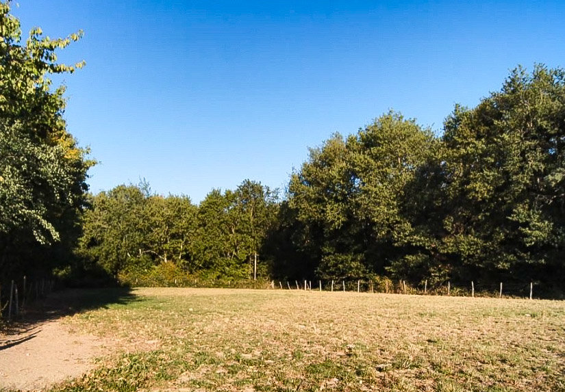 Sale Building land - Bonneuil Matours