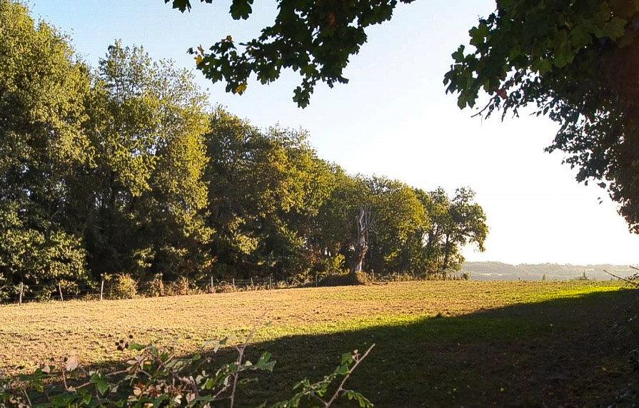 Sale Building land - Bonneuil-Matours