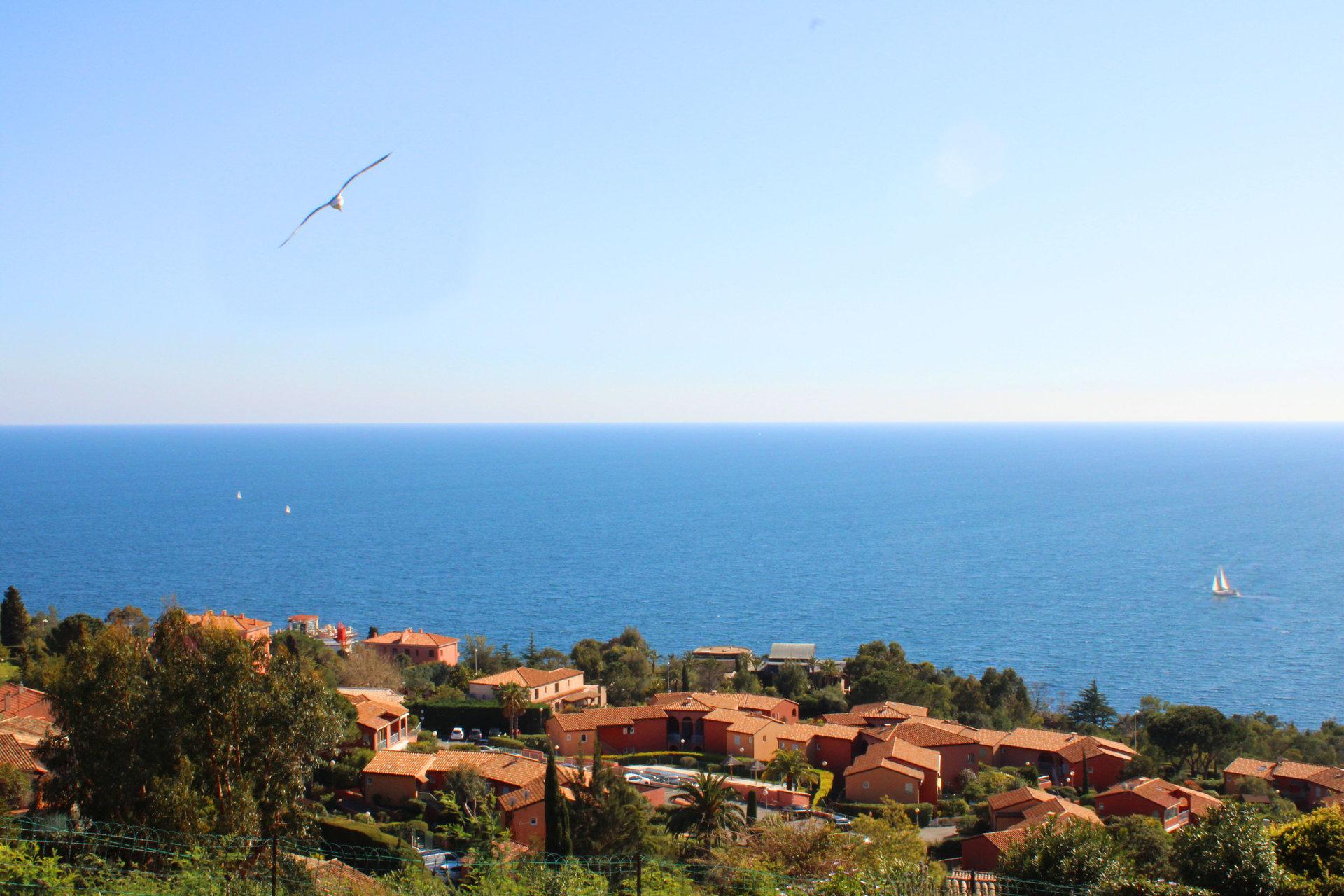 2 pièces  traversant avec vue  mer  panoramique
