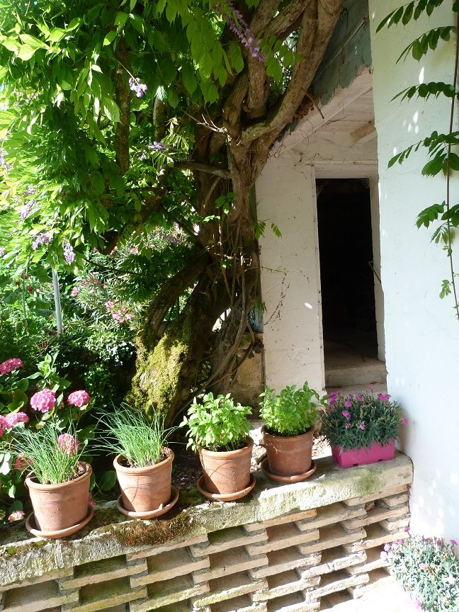 Spacious 5 bedroomed village house with room to extend