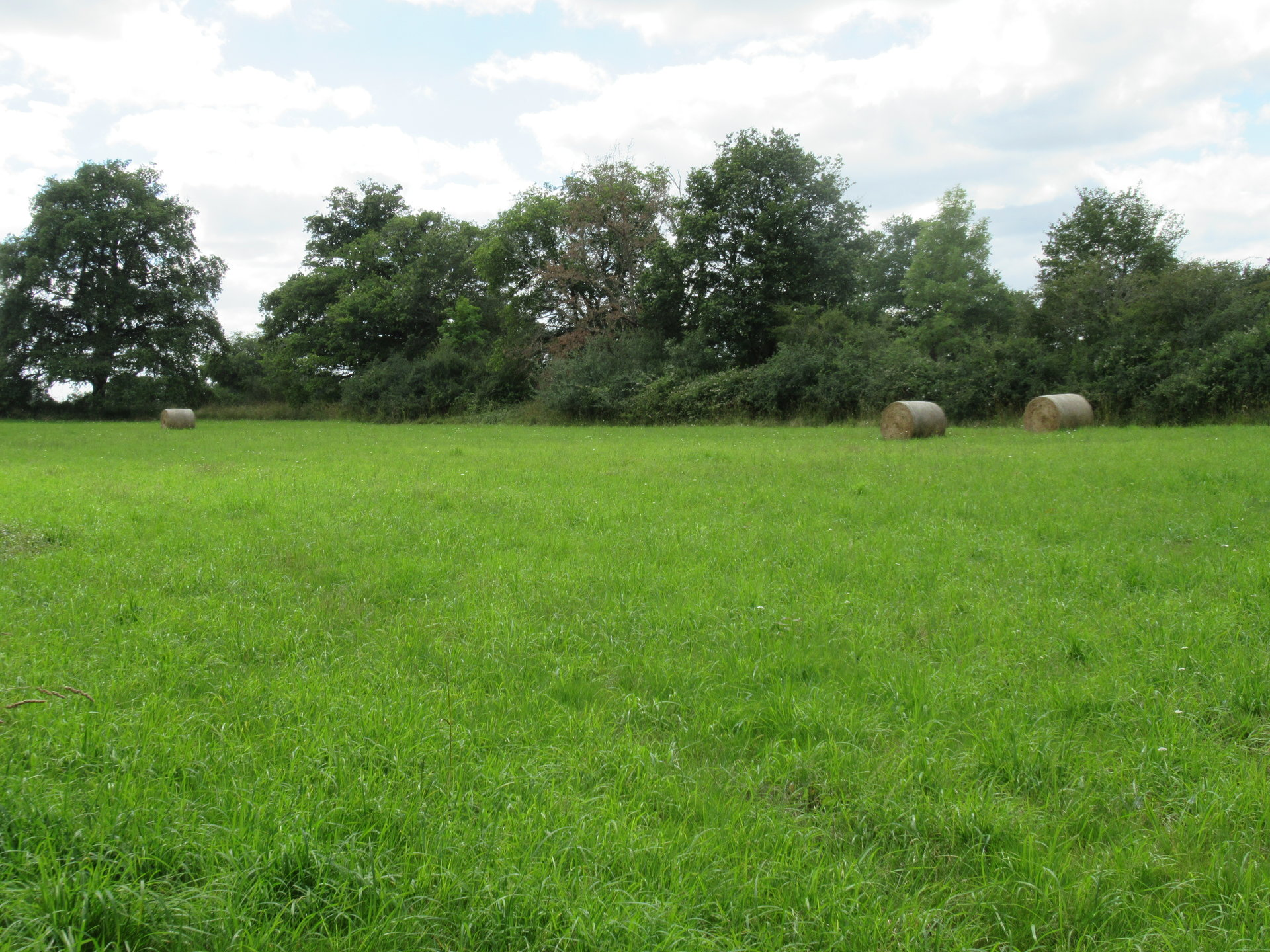 Equestrian Property For Sale Near Adriers - Haute Vienne