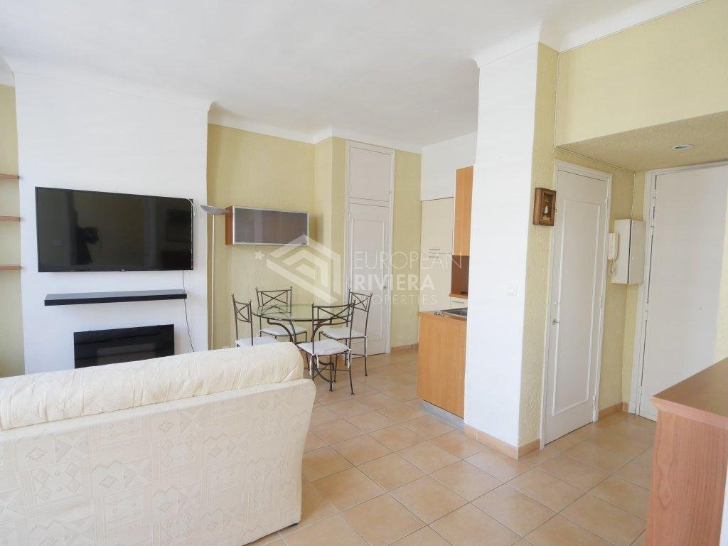 Seasonal rental Apartment - Nice Centre ville