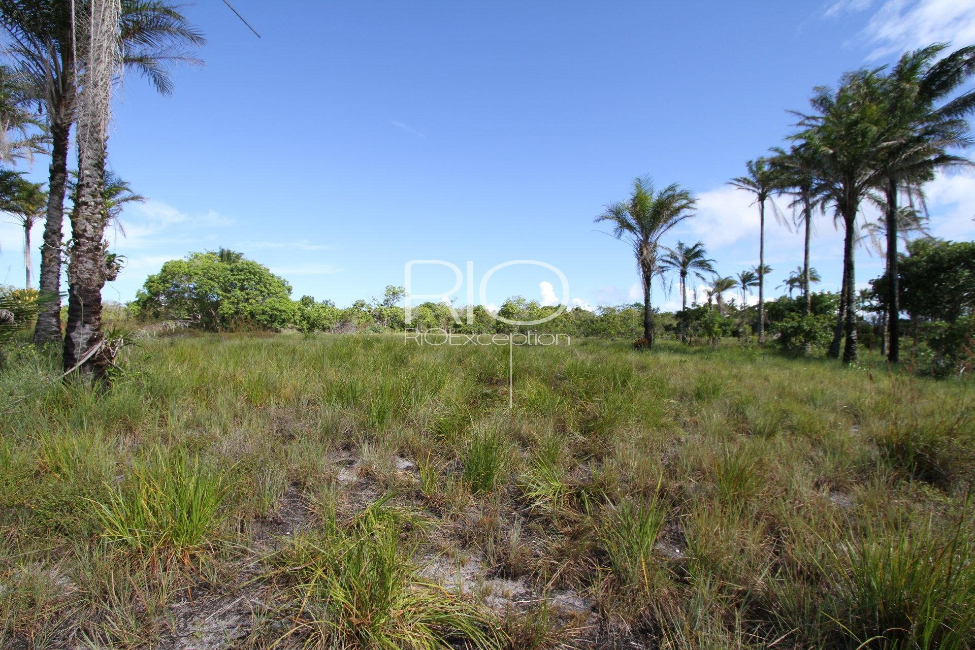 MARAÚ - BAHIA : magnificent building land of almost 7ha on the seafront !!!