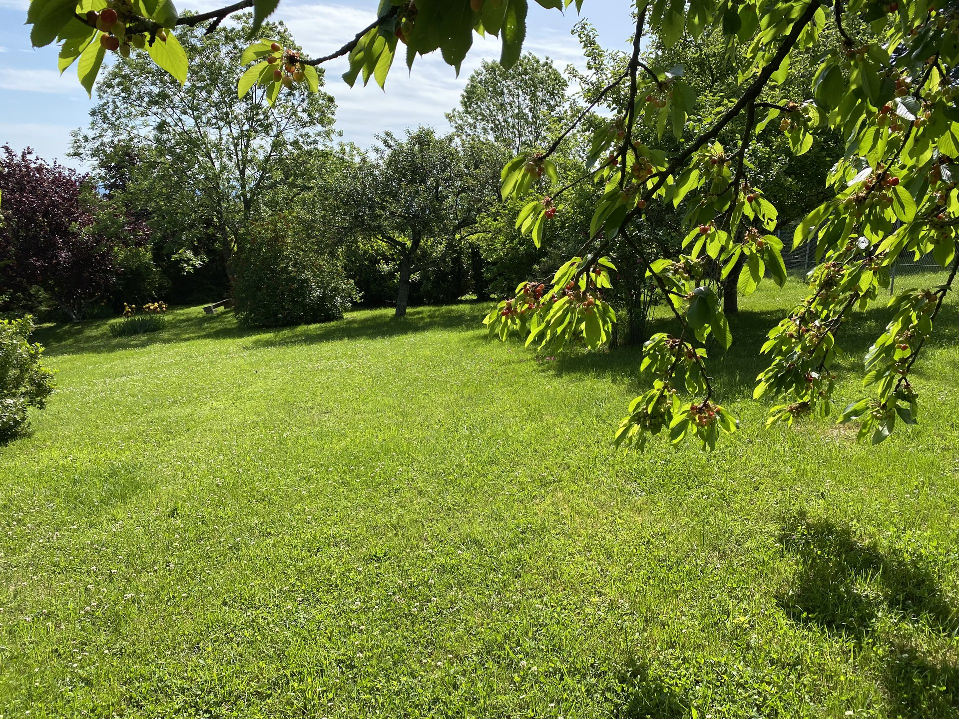 Sale Plot of land - Lachassagne