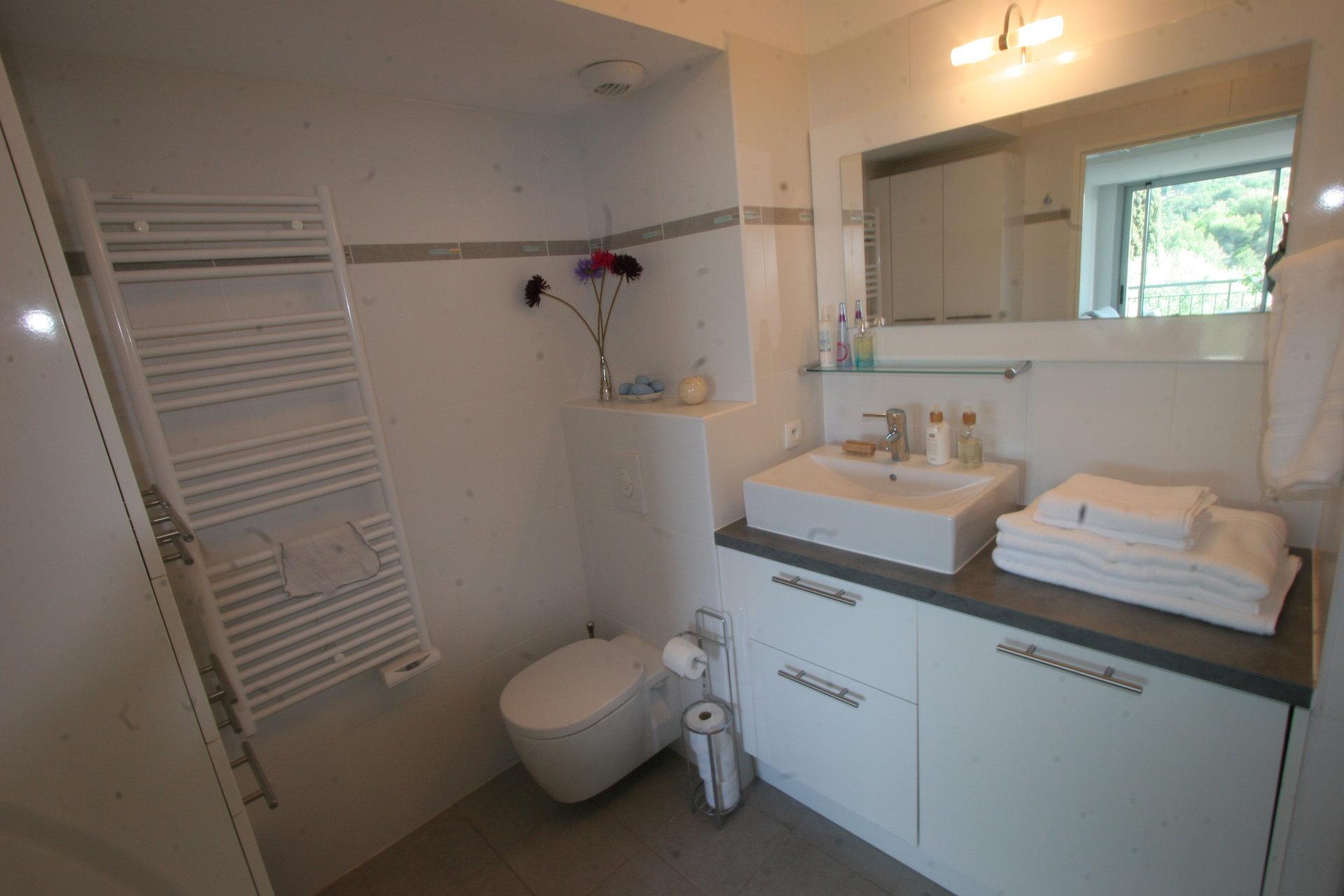 1 bedroom flat Biot Village Seaview Pool Sophia Antipolis